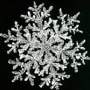 snowflake I Art Print