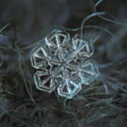 Snowflake Photo - Alcor Art Print by Alexey Kljatov