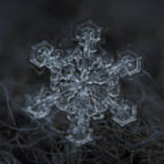 Snowflake Photo - Complicated Thing Art Print