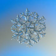 Snowflake Photo - Gardener's Dream Art Print by Alexey Kljatov