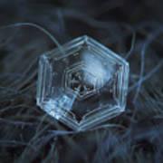 Snowflake Photo - Hex Appeal Print by Alexey Kljatov