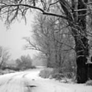 Snowy Branch Over Country Road - Black And White Art Print by Carol Groenen