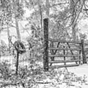 Snowy Cattle Gate Art Print