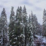Snowy Christmas At Big Bear Lake Art Print