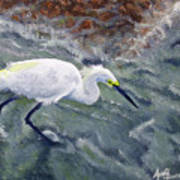 Snowy Egret Near Jetty Rock Art Print