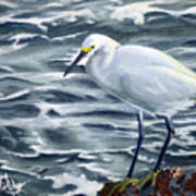 Snowy Egret On Jetty Rock Art Print