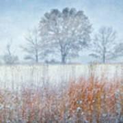 Snowy Field 2 - Winter At Retzer Nature Center  Art Print