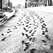 Snowy Footsteps Art Print
