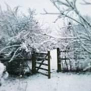 Snowy Garden Gate Three Art Print