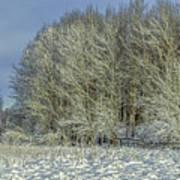 Snowy Landscape #f3 Art Print
