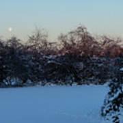 Snowy Moonset Art Print