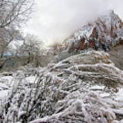 Snowy Mountains In Zion Art Print