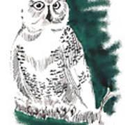 Snowy Owl II Art Print