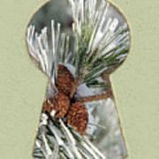 Snowy Pine Keyhole Art Print