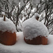 Snowy Pumpkins Art Print