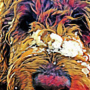 Snowy Pup Art Print