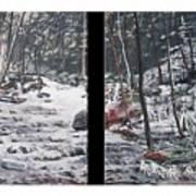 Snowy Stream Art Print