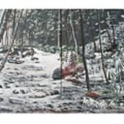 Snowy Stream2 Art Print