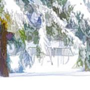 Snowy Trees In Winter Landscape  Art Print