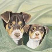 Snuggle Buddies Art Print