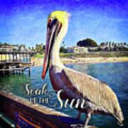 Soak Up The Sun Quote, Cute California Beach Pier Pelican Art Print