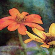 Soft Petals 3058 Idp_2 Art Print