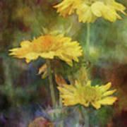 Softly Yellow 3052 Idp_2 Art Print