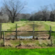 Soggy Texas Bayou Art Print