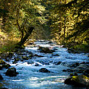 Sol Duc River Above The Falls - Washington Art Print