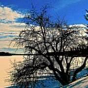 Solace On Silver Lake Art Print