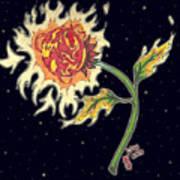 Solar Sun Flower Art Print by Law Stinson