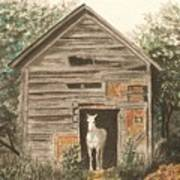 Solitaire Near Enterprise.  Solitary Horse Looking Out From Barn Door Print by Lynn ACourt