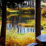Solitude At Donner Pass Art Print