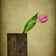 Solitude In Bloom Art Print