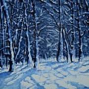 Somich Snow Art Print