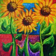 Sonflowers II Art Print