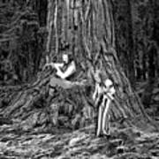 Songs In The Woods Art Print