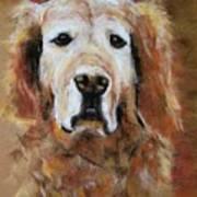 Sonny Art Print