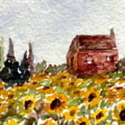 Sonoma Hillside Series Sunflowers Art Print
