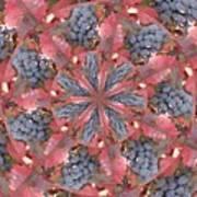 Sonoma Vines Art Print