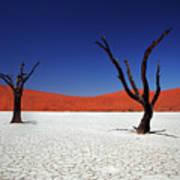 Sossusvlei In Namib Desert, Namibia Art Print by Igor Bilic Photography