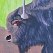 South Dakota Bison Art Print