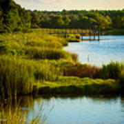 South From The Causeway Huntington Beach State Park Sc Art Print