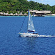 South Sea Sail Art Print
