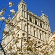 South Tower Exeter Cathedral Art Print