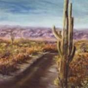 Southern Arizona Art Print by Jack Skinner