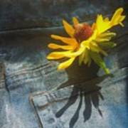 Southern Blue Jean Pocket Art Print
