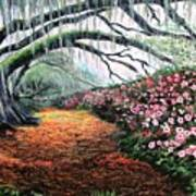 Southern Charm Oak And Azalea Art Print