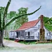 Southern Home Art Print