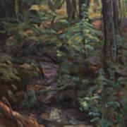 Southern Jungle Art Print
